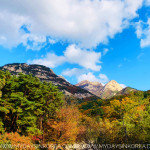 Korea, Autumn, Fall, Herbst, Reisein Korea, Travel in Korea, Natur, Nature