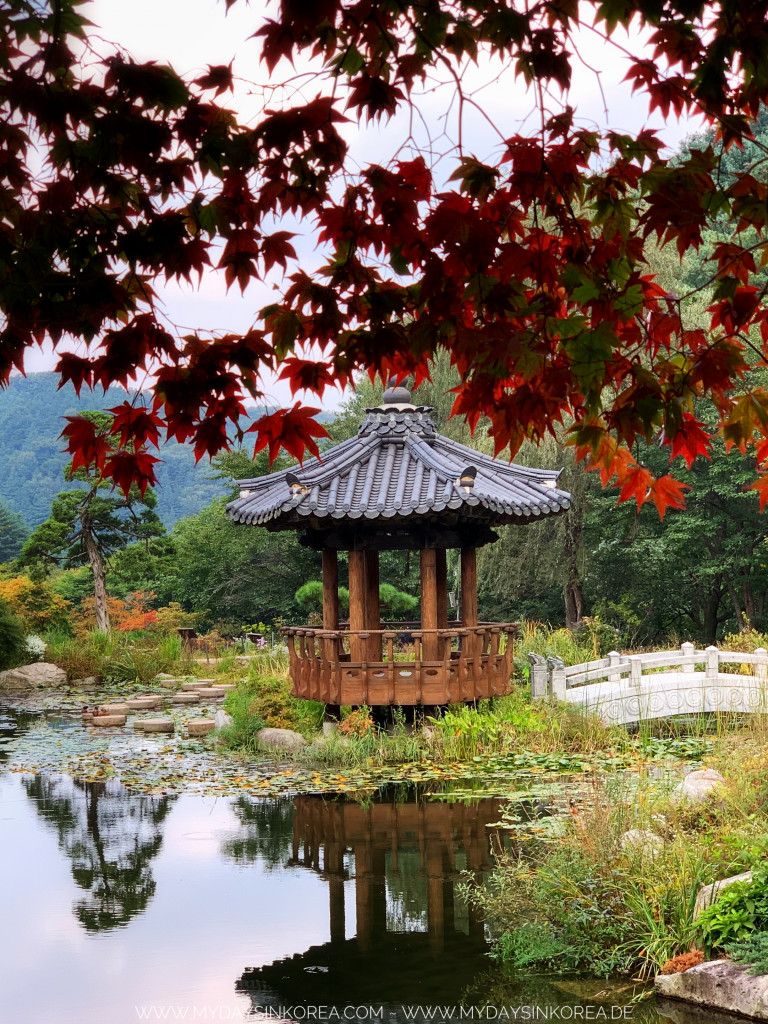 Garden of morning calm, botanical garden, destination, Gyeonggi